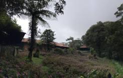 Cerro Dantas, Heredia